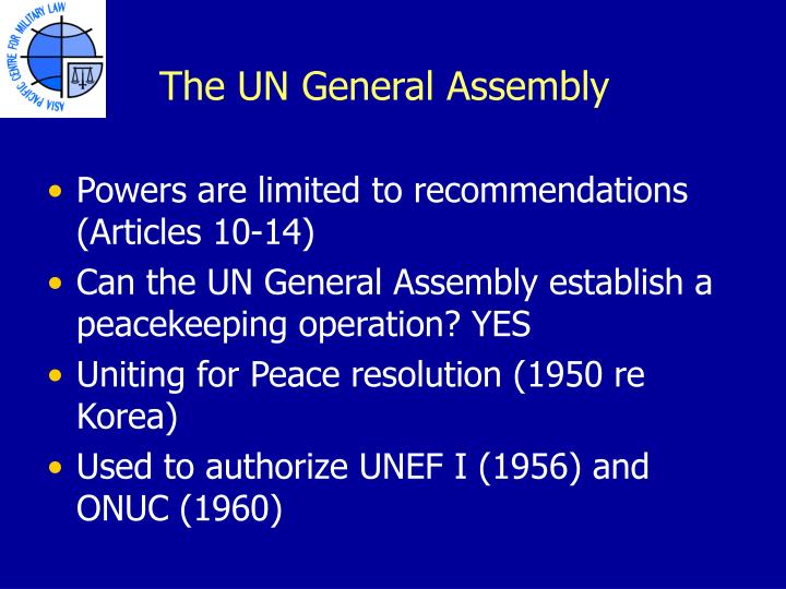 The UN General Assembly