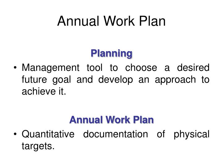 Annual Work Plan