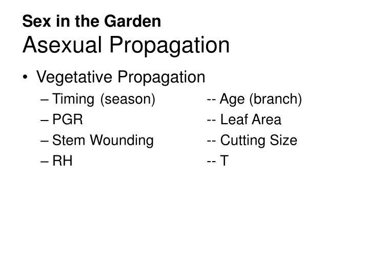 Sex in the Garden