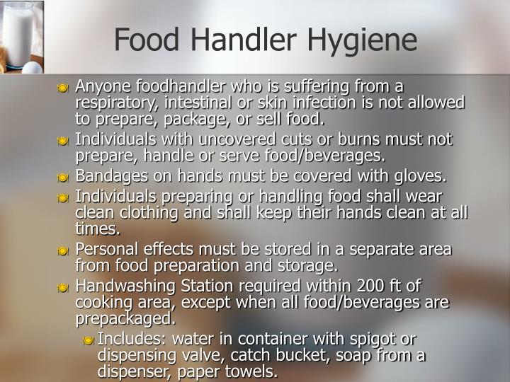 Food Handler Hygiene
