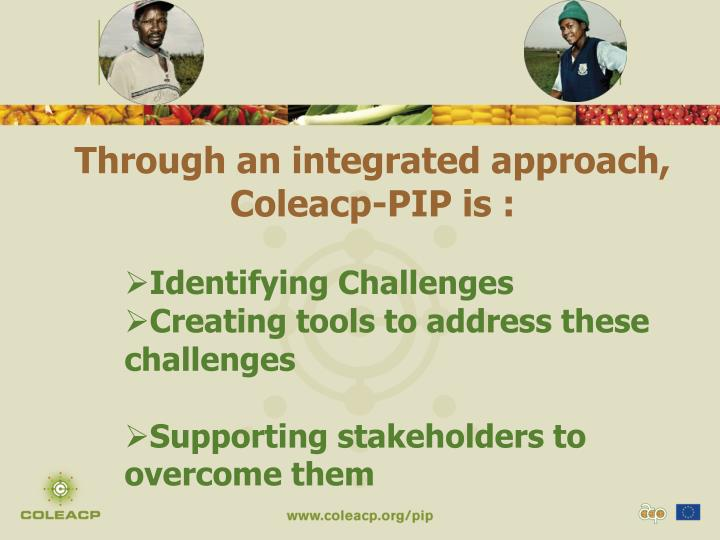Through an integrated approach, Coleacp-PIP is :