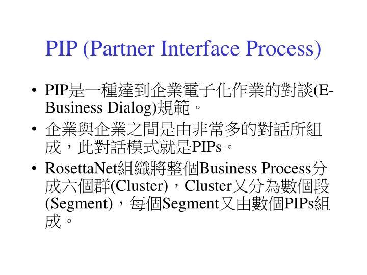PIP (Partner Interface Process)