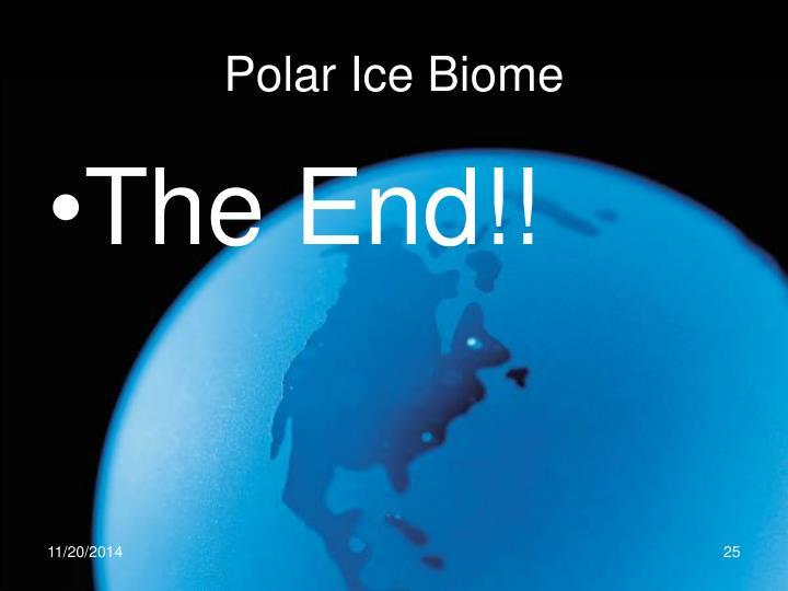 Polar Ice Biome
