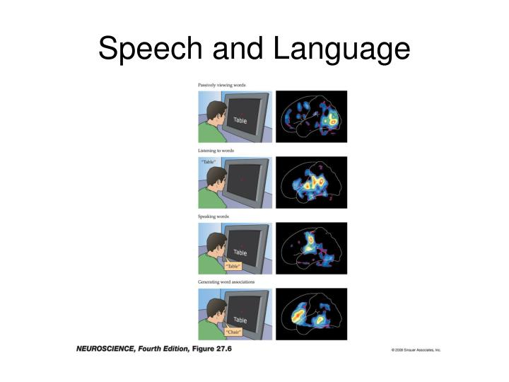 Speech and language