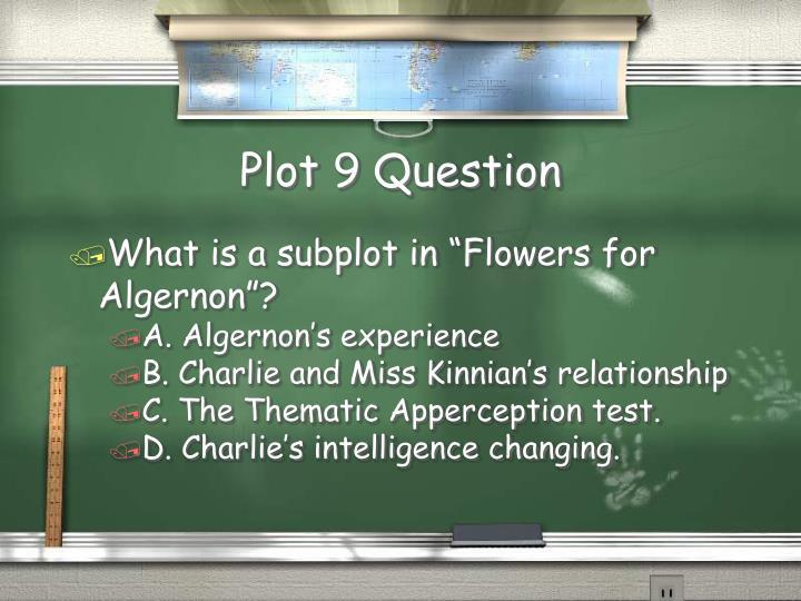 Plot 9 Question
