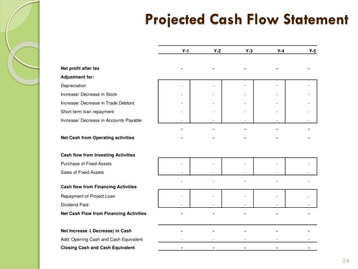 Projected Cash Flow Statement