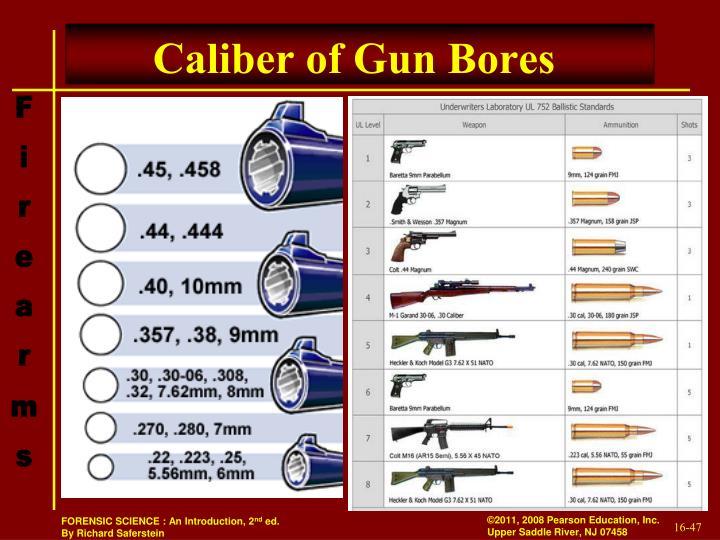 Caliber of Gun Bores