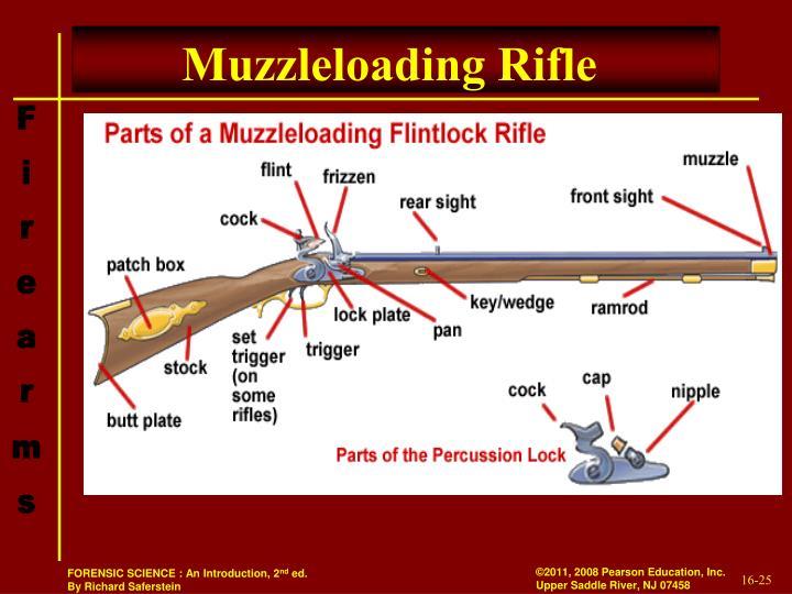 Muzzleloading Rifle