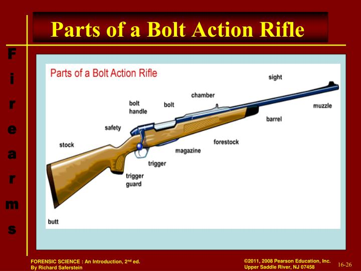 Parts of a Bolt Action Rifle