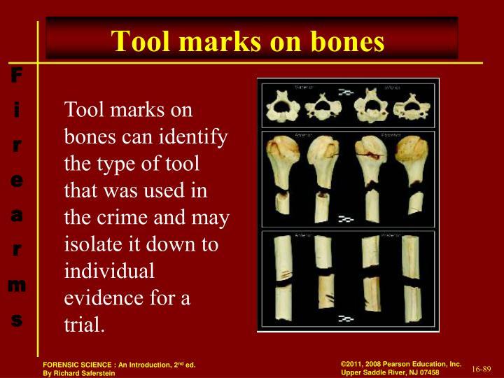 Tool marks on bones