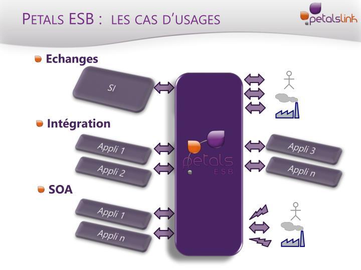 Petals ESB :  les cas d'usages