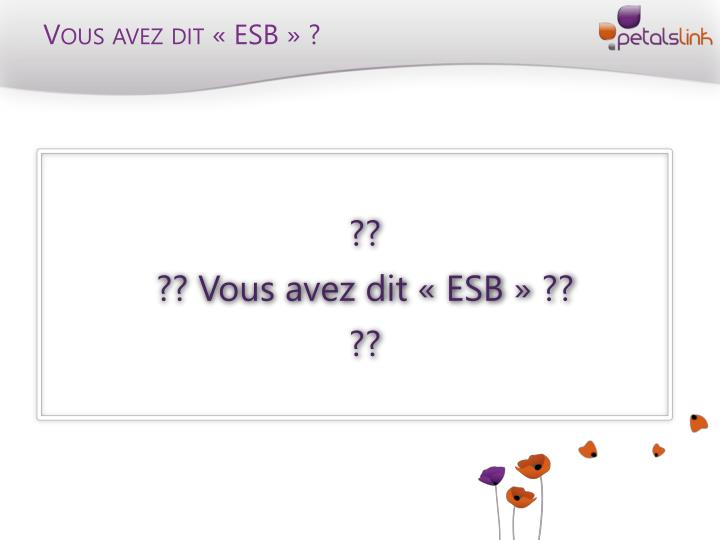 Vous avez dit «ESB» ?