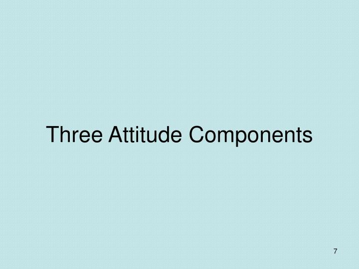 Three Attitude Components