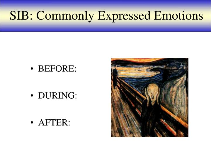 SIB: Commonly Expressed Emotions