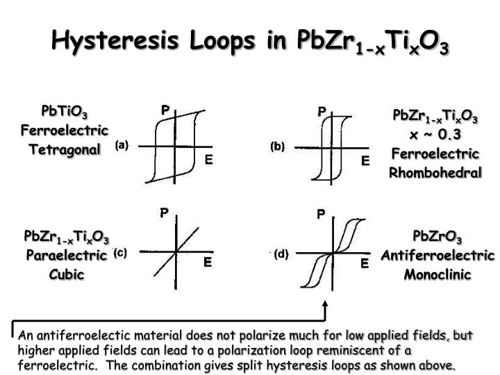 Hysteresis Loops in PbZr