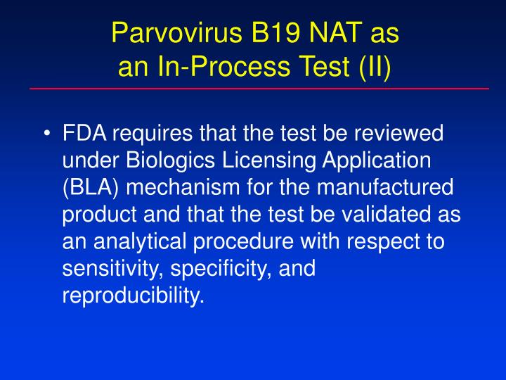 Parvovirus B19 NAT as
