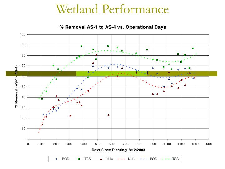 Wetland Performance