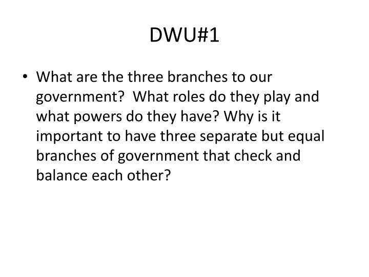 DWU#1