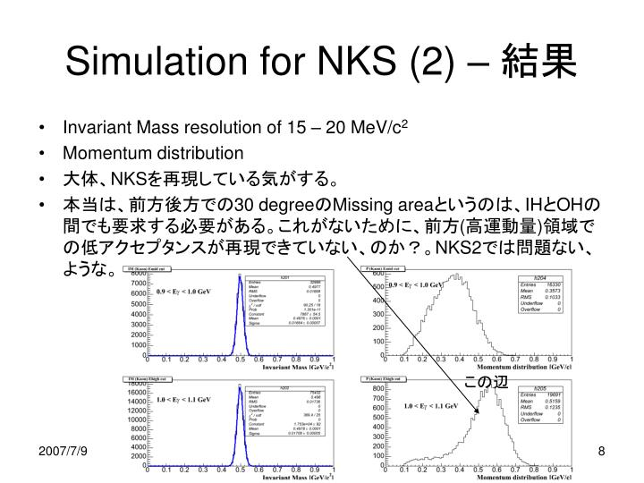 Simulation for NKS (2) –