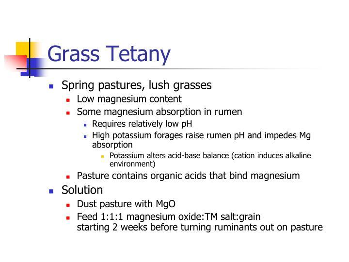 Grass Tetany