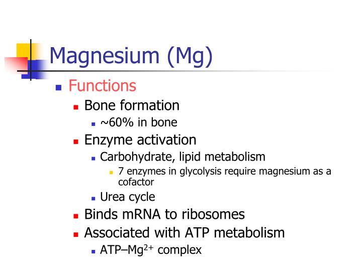 Magnesium (Mg)