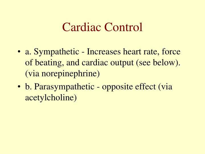 Cardiac Control