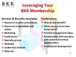 leveraging your bkr membership