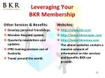 leveraging your bkr membership1