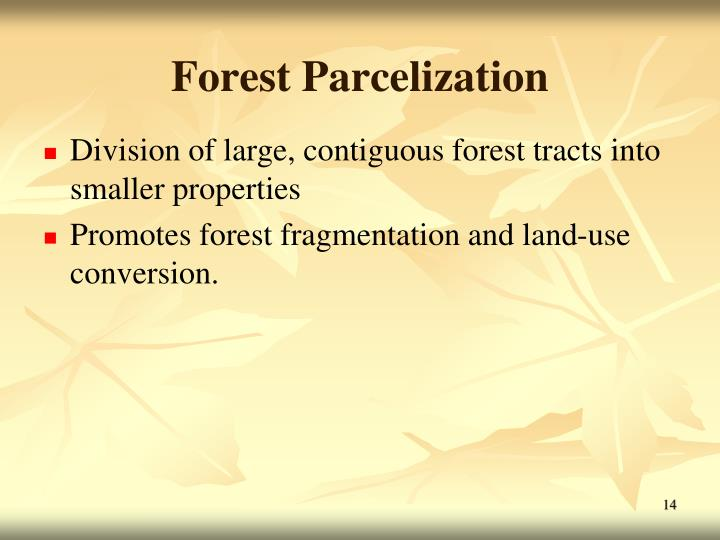 Forest Parcelization