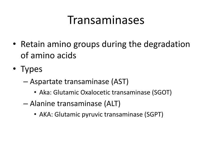 Transaminases