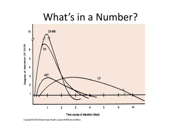What's in a Number?