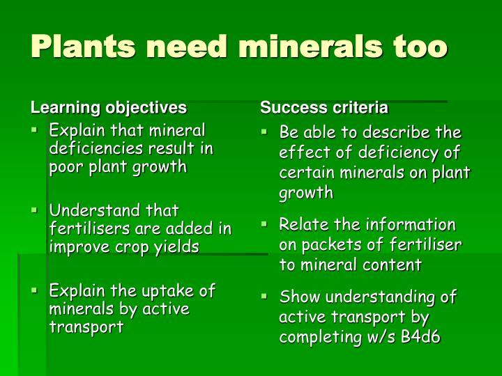 Plants need minerals too