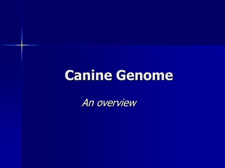 Canine genome