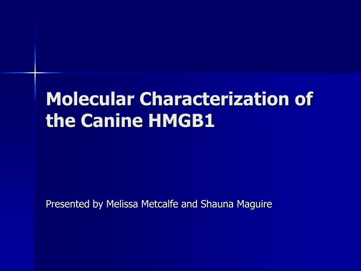 molecular characterization of the canine hmgb1