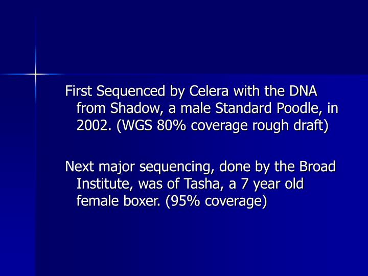 First Sequenced by Celera with the DNA from Shadow, a male Standard Poodle, in 2002. (WGS 80% covera...