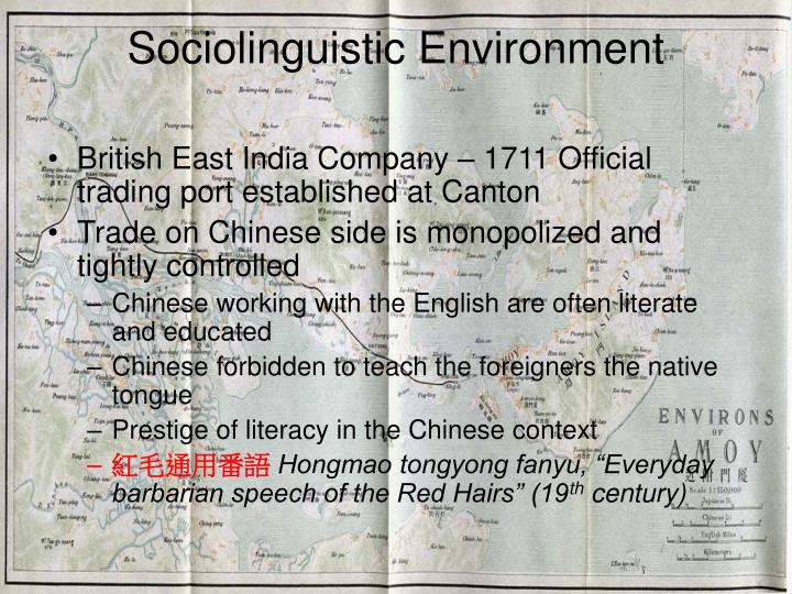 Sociolinguistic Environment