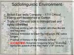 sociolinguistic environment