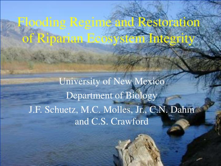 Flooding regime and restoration of riparian ecosystem integrity