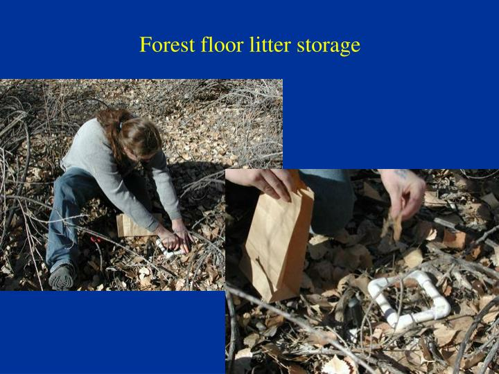 Forest floor litter storage