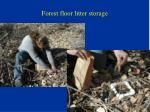forest floor litter storage