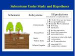 subsystems under study and hypotheses