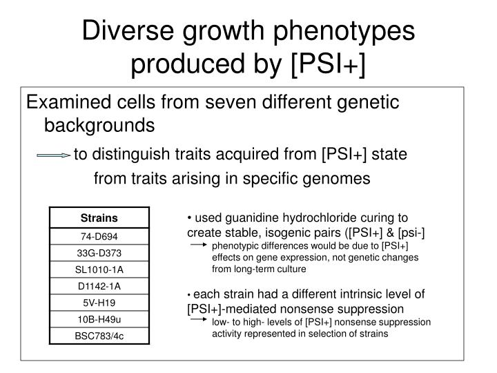 Diverse growth phenotypes