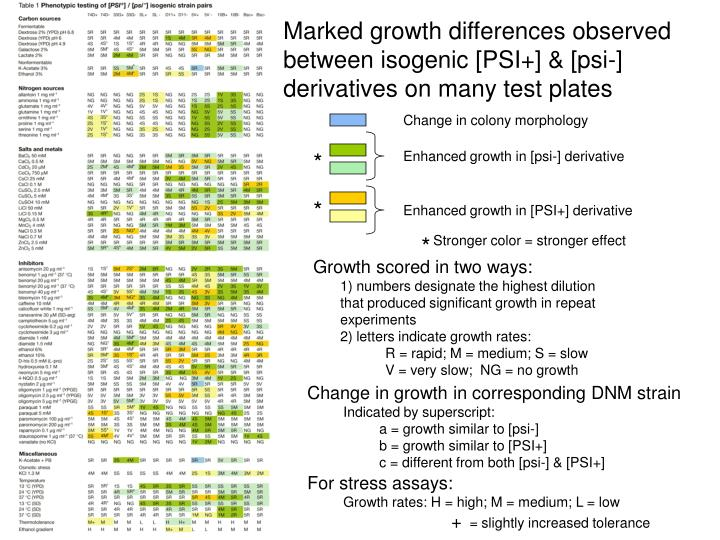 Marked growth differences observed between isogenic [PSI+] & [psi-] derivatives on many test plates