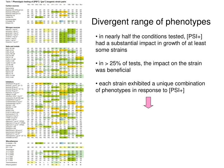 Divergent range of phenotypes