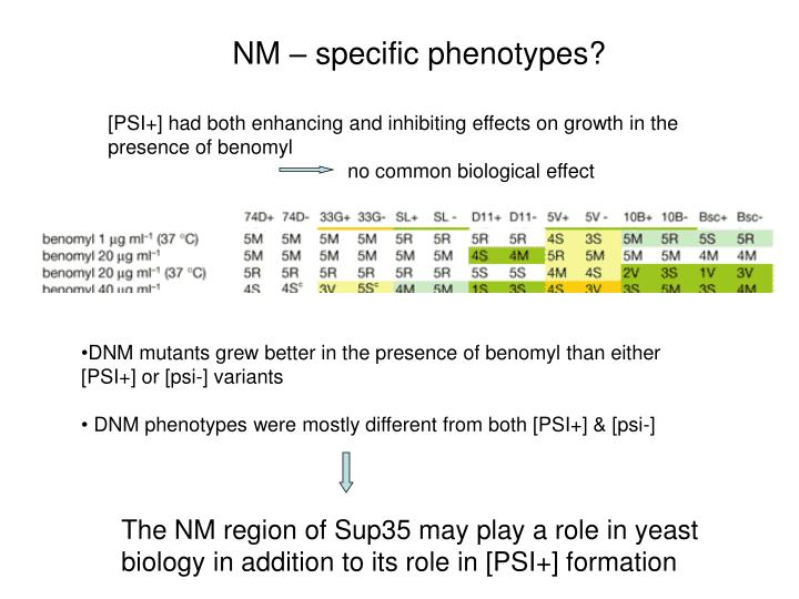 NM – specific phenotypes?
