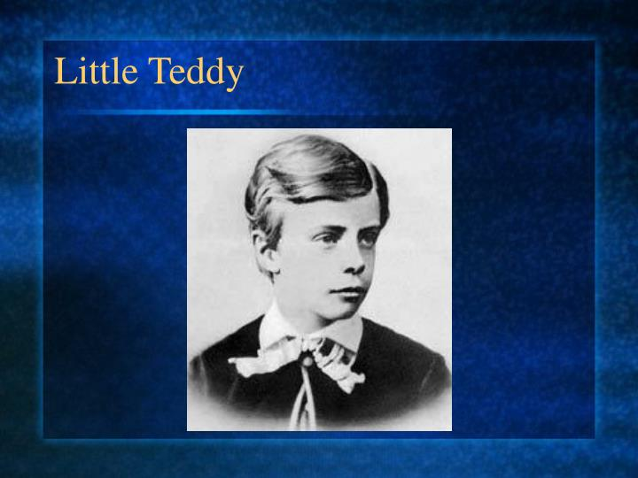 Little Teddy
