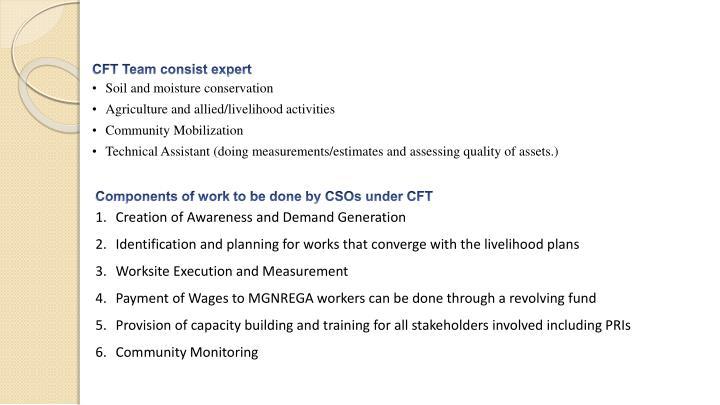 CFT Team consist expert
