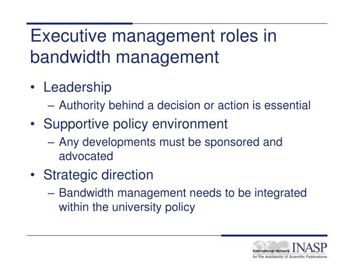 Executive management roles in bandwidth management