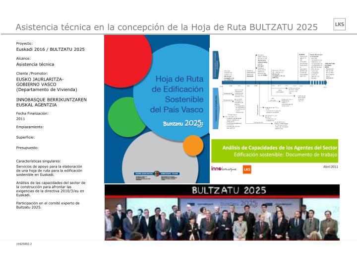 Asistencia técnica en la concepción de la Hoja de Ruta BULTZATU 2025