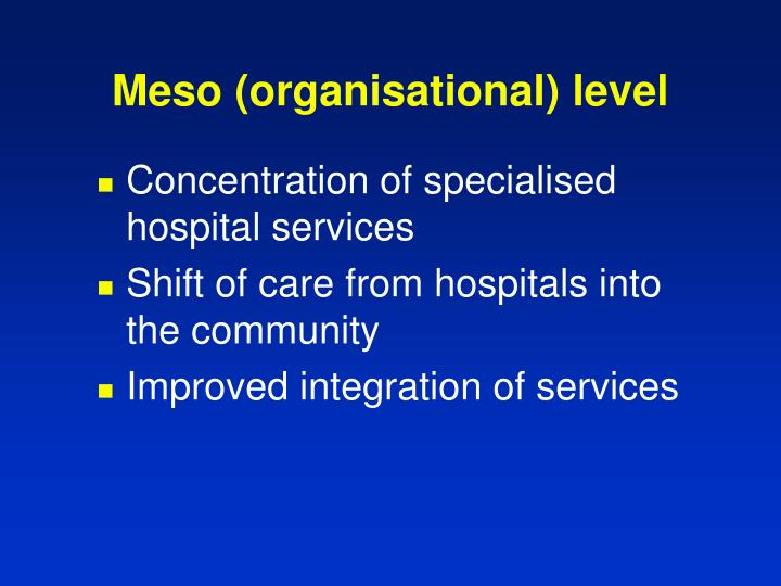 Meso (organisational) level
